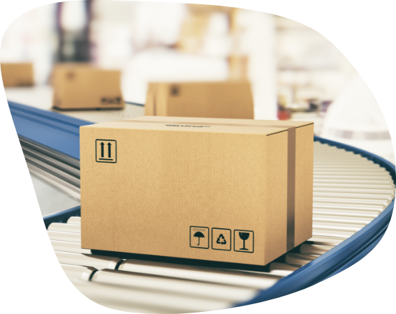 Pick Pack and Despatch Services